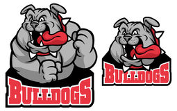 Mascotte del bulldog Fotografia Stock Libera da Diritti