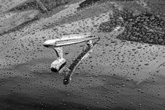 Mascotte del cofano della console di guado di Britannici Fotografia Stock Libera da Diritti