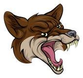 Mascotte del coyote Fotografie Stock Libere da Diritti