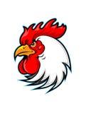 Mascotte del gallo Immagini Stock