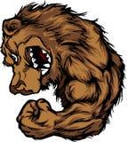Mascotte dell'orso che flette il fumetto del braccio illustrazione di stock