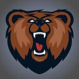 Mascotte dell'orso grigio, progettazione di logo del gruppo Fotografie Stock
