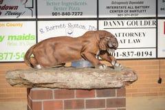 Mascotte della High School di Munford il puma, Munford TN Immagine Stock Libera da Diritti