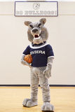 Mascotte della High School per la squadra di pallacanestro Immagine Stock Libera da Diritti