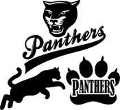 Mascotte della squadra della pantera Fotografia Stock