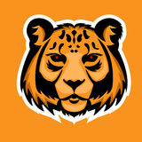 Mascotte di logo della tigre Illustrazione di vettore isolata testa del leopardo delle nevi Immagini Stock