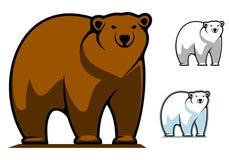 Mascotte drôle d'ours de bande dessinée Images stock
