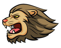 Mascotte principale de lion Photo stock