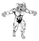 Mascotte spaventosa di sport della tigre Fotografie Stock Libere da Diritti