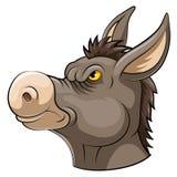 Mascottehoofd van een ezel royalty-vrije illustratie