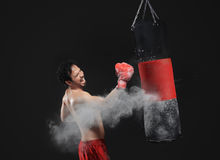 Masculine asian boxer punching the punching bag Royalty Free Stock Photo