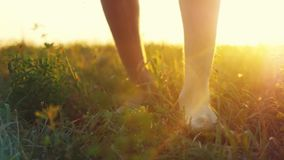 Masculine feet go barefoot to the soft grass through the sun during beautiful sunset with lense flare effects in stock video