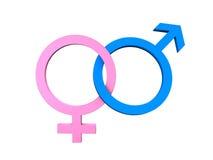 Masculine Feminine Symbols. The symbols of the sexes isolated on white Royalty Free Stock Photos