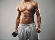 Masculine man in holding dumbbell on grey background Royalty Free Stock Images