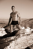 Masculinity. Muscular man with tattoos, in underwear standing on a rock. Taken in sepia stock image