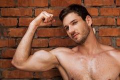 Masculinity. Stock Image