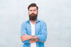 Masculinity and male beauty concept. Hipster with beard and mustache wear denim shirt. Well groomed macho. Brutal. Handsome hipster man on grey wall background stock image