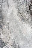 Masern Sie altes Holz, hölzerne Hintergrundartweinlese, hölzernes Muster Stockfoto