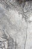 Masern Sie altes Holz, hölzerne Hintergrundartweinlese, hölzernes Muster Stockbild
