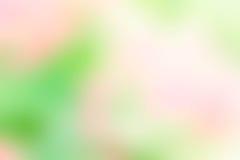 Masern Sie gelbe der Unschärfe grüne rosa und weiße Mischungsfarbpastellnatur Lizenzfreie Stockbilder