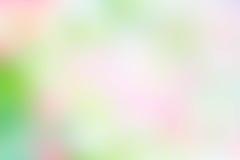 Masern Sie gelbe der Unschärfe grüne rosa und weiße Mischungsfarbpastellnatur Lizenzfreies Stockbild