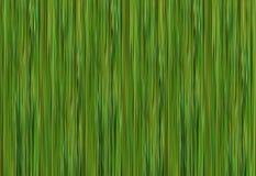Masern Sie grüner Effektbambusstammhintergrund lineare eco Basis Stockfotos