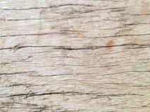Masern Sie Hintergrund des alten Holzes oder der Klotzoberfläche Lizenzfreie Stockfotos