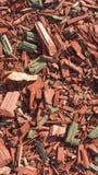 Masern Sie Hintergrund von feinen rote Farbholzspänen lizenzfreie stockfotos