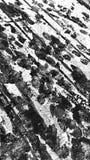 Masern Sie Schnee auf Asphalt lizenzfreies stockbild