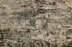 masern Sie Steinwand Gatchina-Palast, errichtet von Pudozh -, das um den Dorfbezirk Pudost, 17. Jahrhundert produziert wird Lizenzfreies Stockfoto