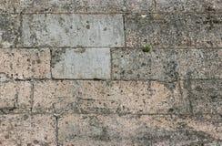 masern Sie Steinwand Gatchina-Palast, errichtet von Pudozh -, das um den Dorfbezirk Pudost, 17. Jahrhundert produziert wird Stockbild