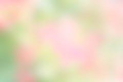 Masern Sie Unschärfefarbgrünen und rosa Hintergrundnatur-Unschärfepastell Stockfoto