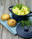 Mashed Potato Royalty Free Stock Images