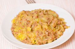Mashed potato with minced meat Royalty Free Stock Image