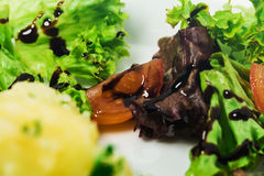 Mashed potatoes closeup. Stock Photos