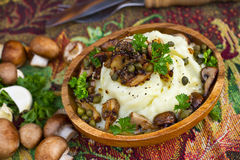 Mashed potatoes with mushrooms Royalty Free Stock Photos
