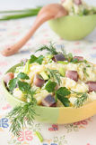 Mashed potatoes with pieces of herring, dill, parsley and chives Royalty Free Stock Image