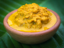 Mashed turmeric in a clay bowl Royalty Free Stock Images