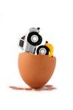 Mashinkok do nascimento - gêmeos de um ovo imagens de stock royalty free