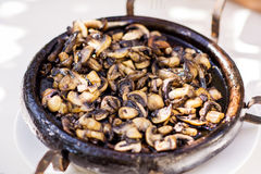 Mashrooms roasted quentes Jantar caseiro Fotografia de Stock