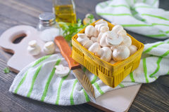 Mashrooms Stock Photography