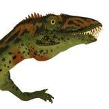 Masiakasaurus Dinosaur Head Royalty Free Stock Photography