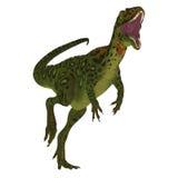 Masiakasaurus Dinosaur on White Stock Photo