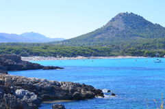 Masificated natuurlijke stranden Royalty-vrije Stock Fotografie
