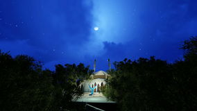 Masjid in the center of the trees at night. Time stock video footage