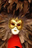 Mask. Venecian mask with feathers and gold stock image