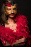 The mask Royalty Free Stock Photos