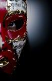 Mask decorating portraits Stock Images