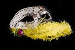 Mask. And a feather for a masquerade party, carnival, for fun, to hide, to suggest Stock Photo