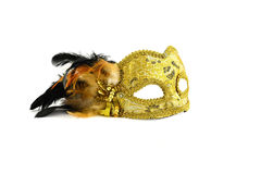Mask. The fragile beauty Stock Image